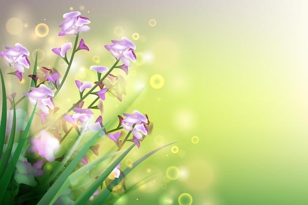 春の花の背景デザインイラスト