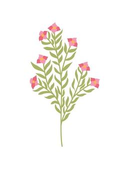 Весенний цветок. ботанический цветочный дизайн иконок. садовое растение на белом фоне. красочные плоские векторные иллюстрации. хорошее украшение для свадебного приглашения или альбома для вырезок.