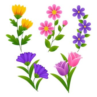 Коллекция весенних цветов