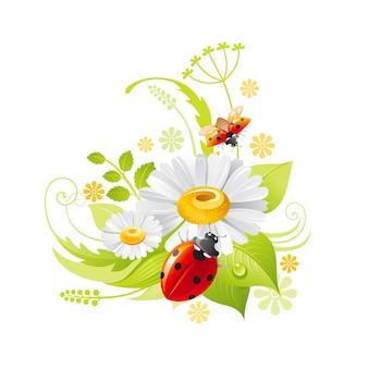 春の花 。葉、草、てんとう虫とデイジーカモミールの花のシンボル。