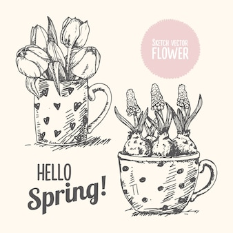 Spring flower hand drawn