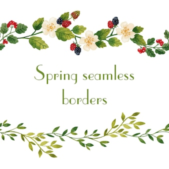 Spring flower seamless borders watercolor isolated
