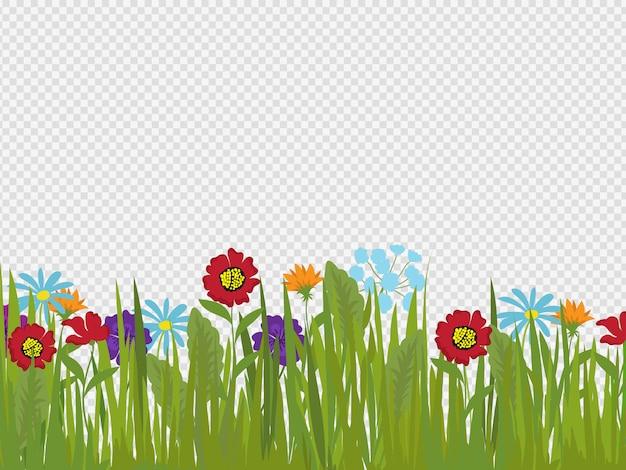 春の花と草の境界線の透明な背景