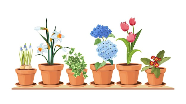 春の花。花の装飾的なインテリア要素。ポットの孤立したチューリップ、棚のイラストの観葉植物。