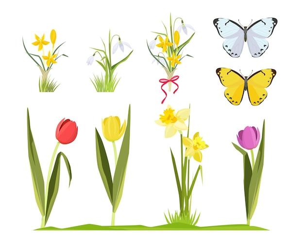 春の花。漫画の花カモミールチューリップセットの花の庭のコレクションの花束。