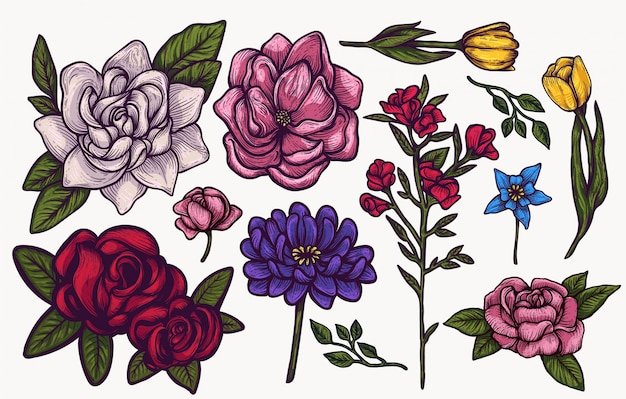 Spring flowers hand drawn isolated colorful   clipart set