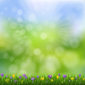 Spring flowers nature poster with grass