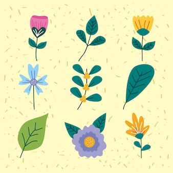 春の花セット Premiumベクター