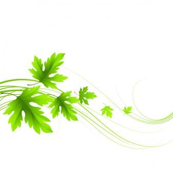 Spring fresh green leaves.