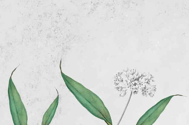 Motivo di aglio primaverile su sfondo grigio grunge