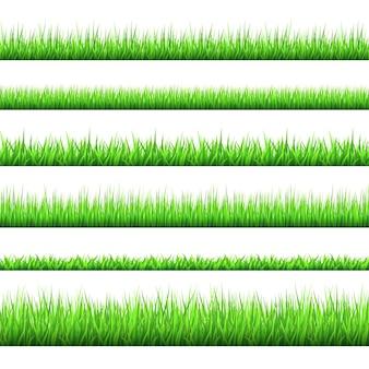 白で隔離された春の緑の草の境界線
