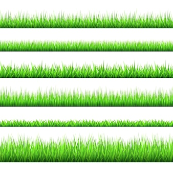 Spring green grass borders set isolated on white