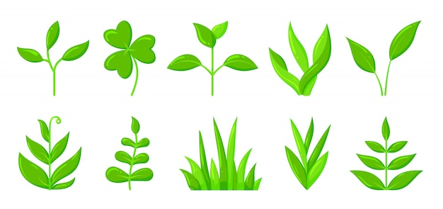 Spring green grass sprout plant flat cartoon icon set, organic seedling sapling growing.