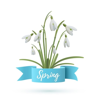 Spring illustration. snowdrop flowers with blue ribbon isolated