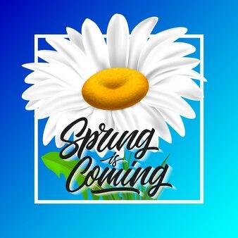 Весна идет надпись с ромашкой в рамке на синем фоне.