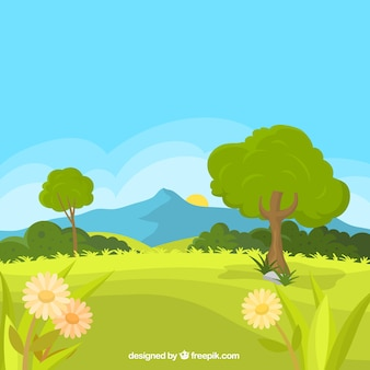 Spring landscape background with meadow and daisies