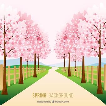 봄 풍경 배경