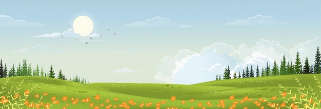 Spring landscape with peaceful rural nature in springtime with wild grass land