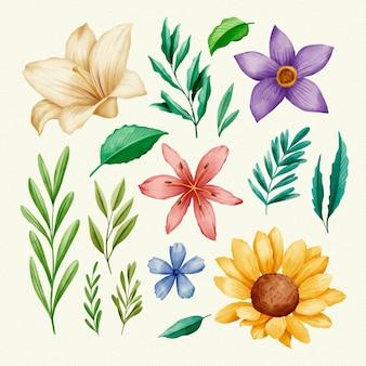 Весенние листья и красочные цветы