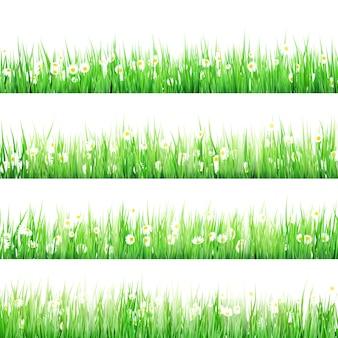 ヒナギクと春の牧草地。