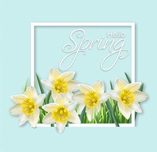 Spring narcissus flowers frame