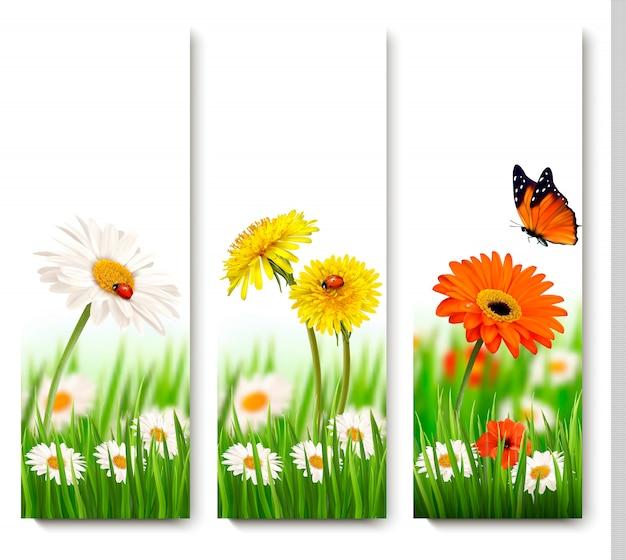 色とりどりの花と蝶の春の自然。ベクター