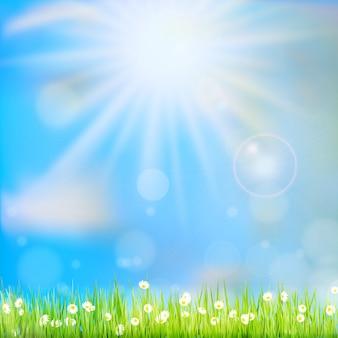 春や夏の自然の背景を抽象化します。
