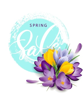 Spring sale concept. spring background with flowering crocuses.template vector. eps 10