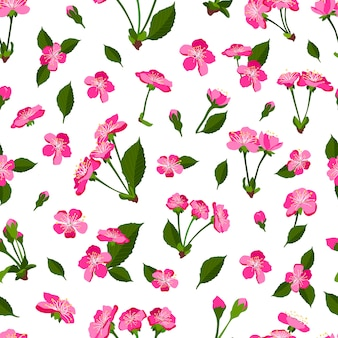 Spring seamless pattern with cherry blossom