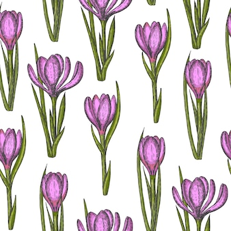 Spring seamless pattern with hand drawn flowers