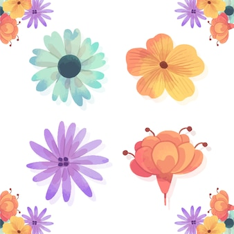 Spring season flowers isolated on white background