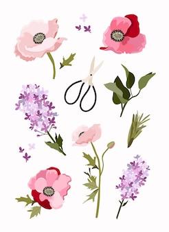 手描きの花の要素の春のセット植物コレクション