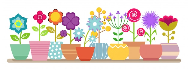 Spring and summer flowers in the pots -  house plants illustration