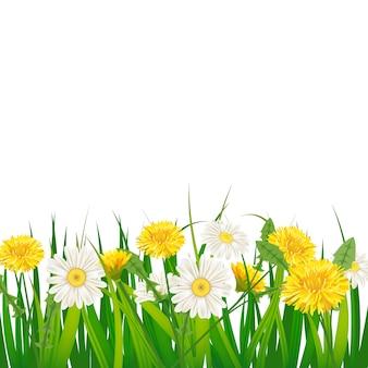 Весенний шаблон фона с цветами одуванчиков и ромашек, ромашек, травы