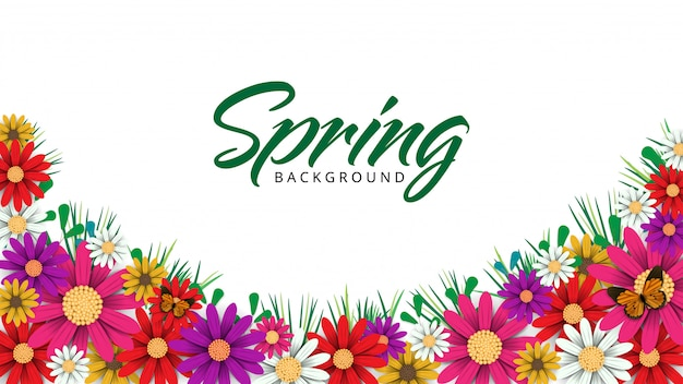 Spring time flowers background