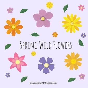 Primavera fiori sfondo