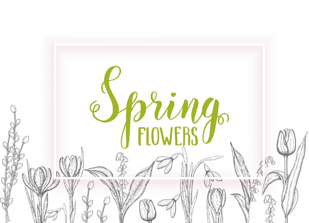 Spring with hand drawn flowers-lilies of the valley, tulip, willow, snowdrop, crocus - isolated on white. hand made lettering- spring Premium Vector