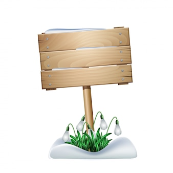 Spring wooden sign with white flowers of snowdrops