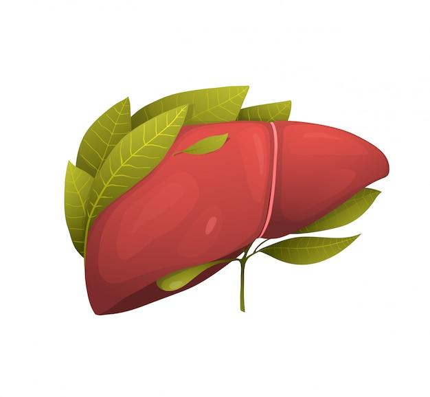 Росток в иллюстрации резюме здорового человеческого внутреннего органа. печень с растущим растением и зелеными листьями. вегетарианская диета, экологически чистые и органические продукты питания приводят к сюрреалистическому рисунку. медицина и здравоохранение