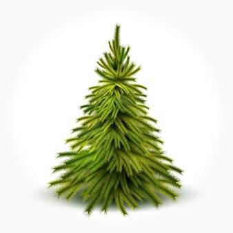 冬の雪と現実的な緑の針とトウヒのクリスマスツリー Premiumベクター