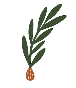 Spruce twig with a cone. simple minimalistic green branch of a spruce with needles. christmas tree. holiday decoration, winter symbol. floral elegant plant. vector illustration in flat cartoon style.