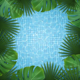 Square background with green tropical leaves of palm and monstera and pool water.