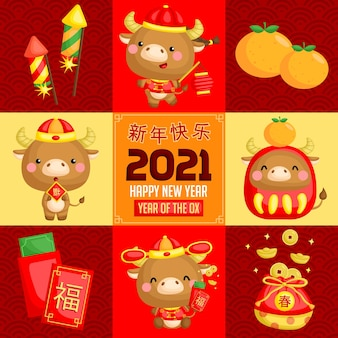 A square composition vector of ox in chinese new year celebration