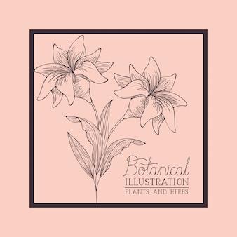 ユリの花が描かれた正方形のフレーム