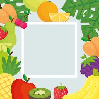 Квадратная рамка с тропическими свежими фруктами