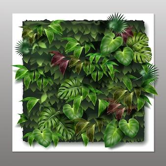 열대 녹색 잎이있는 사각형 수직 정원 또는 녹색 벽