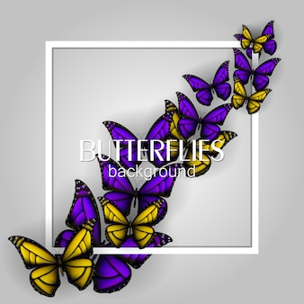 Square white frame banner with colorful butterflies.