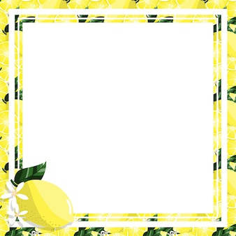 Square white frame and rectangle label on citrus lemon background