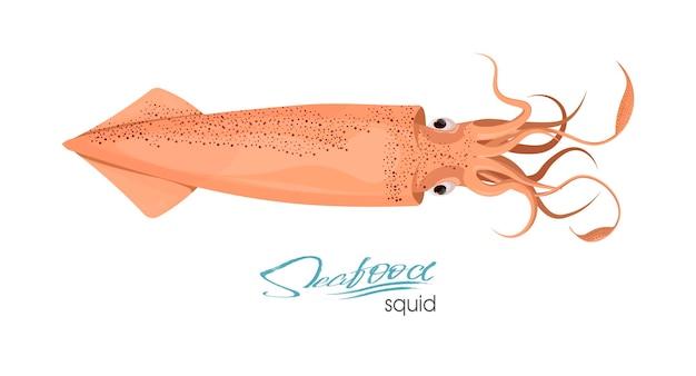 흰색 배경에 고립 된 촉수와 붉은 색 디자인 평면 붉은 오징어의 오징어