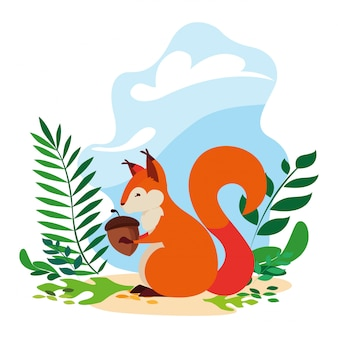Squirrel acorn happy autumn season flat